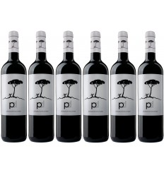 PINO DONCEL BLACK Caja 6 Botellas