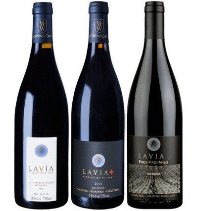 LAVIA Pack Bodega Caja 3 Botellas