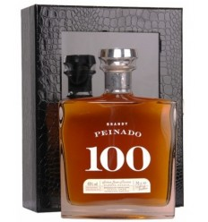 BRANDY PEINADO 100
