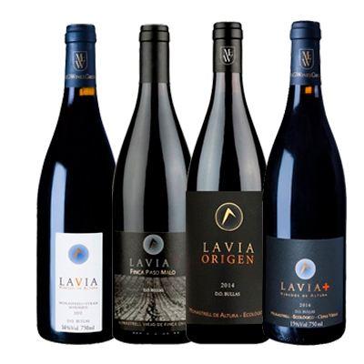 Botella vino Bodegas Lavia en Vinorea