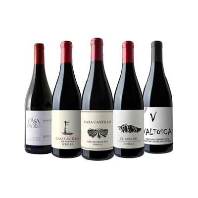 Compra vino Bodegas Casa Castillo en Vinorea