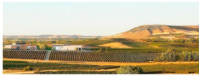 Compra vino de Bodegas Pago de los Capellanes en Vinorea