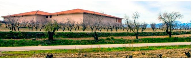 Instalaciones Bodegas Alto Moncayo