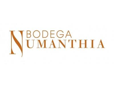Bodegas Numanthia